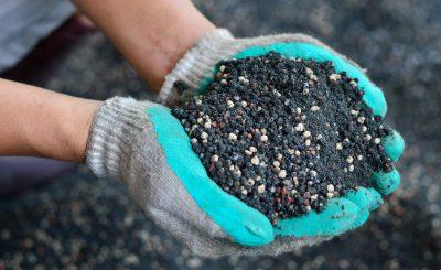 Подкормка органическая или минеральная, плюсы и минусы